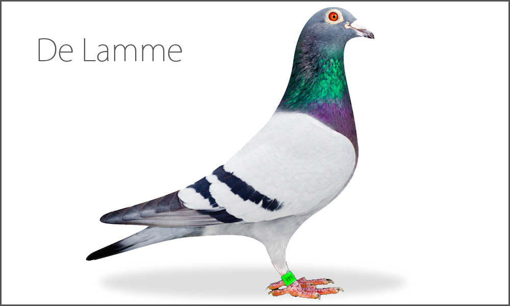 De Lamme