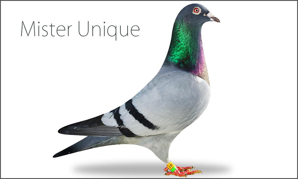 Mister Unique
